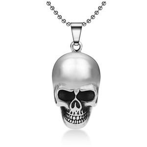 Awesome Titanium Skull Neclace